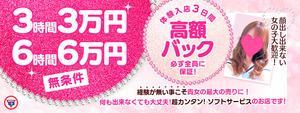札幌美女図鑑の求人情報