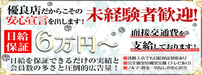 黒薔薇夫人 日本橋店の求人