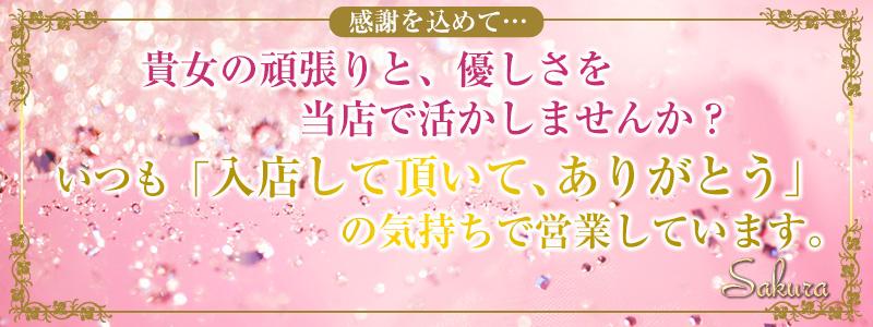 さくら 川崎店の求人情報