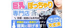 神戸・三宮エリアのおすすめ求人 巨乳・爆乳・ぽっちゃり専門店 蒼いうさぎ