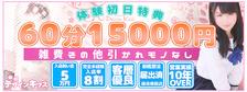 びーねっと おすすめ求人情報 東京デザインキッス