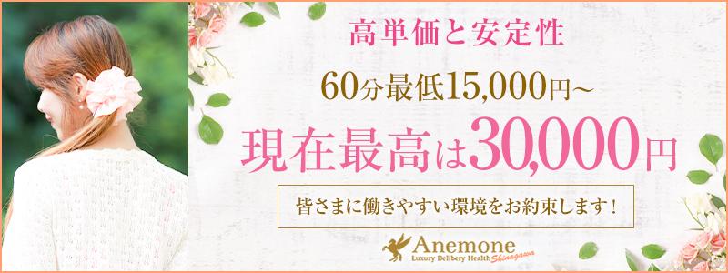 Anemone品川店の求人