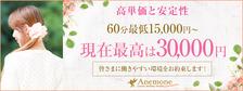 びーねっと おすすめ求人情報 Anemone品川店