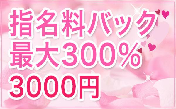 指名料バック最大300%3000円