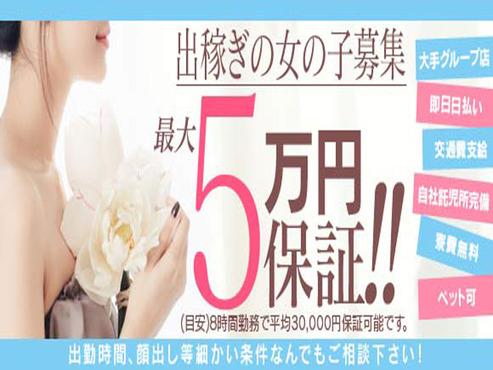 1日最大5万円保証!!!