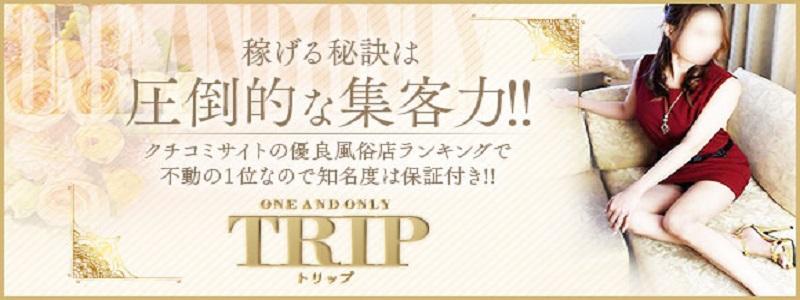 TRIPの求人