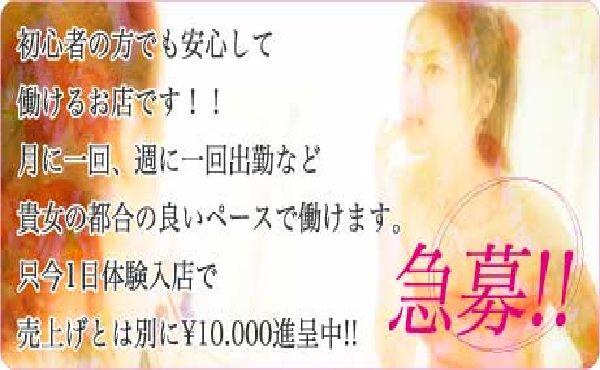 只今☆1日体験でもれなく¥10.000プレゼン